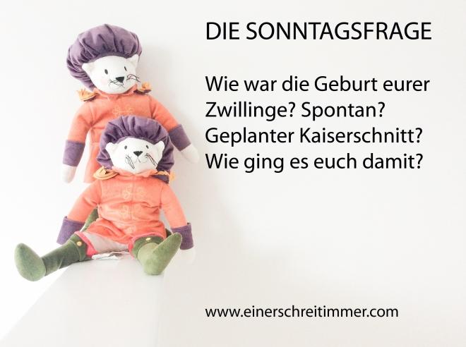 sonntagsfrage01 Ab heute neu: Die SONNTAGSFRAGE....