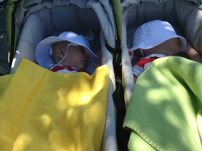 In welcher Schwangerschaftswoche wurde das Geschlecht eurer Zwillinge festgestellt?