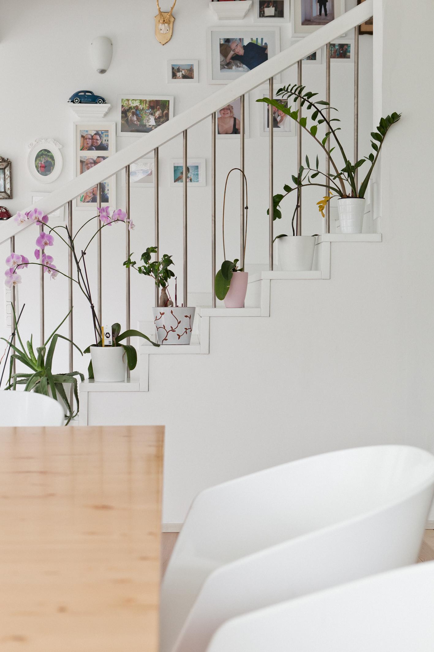 sonntagsfrage hausbau mit zwillingen was ist zu beachten. Black Bedroom Furniture Sets. Home Design Ideas